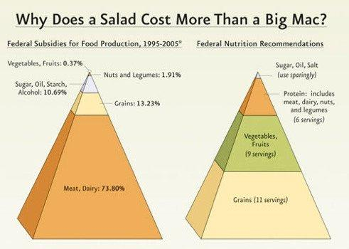 Salad v Big Mac