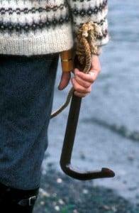 Faroe Islands Gaff Hook (c) EIA