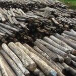 Illegal Rosewood stockpile by Erik Patel