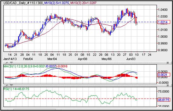 Canadian Dollar 11-06-2013