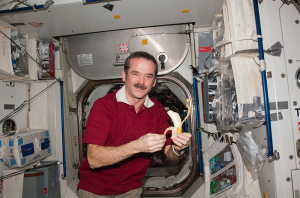 Heaviside Medal for Achievement in Control winner Chris Hadfield in the ISS