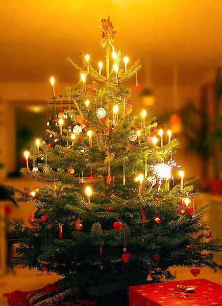 Christmas Tree by Malene Thyssen