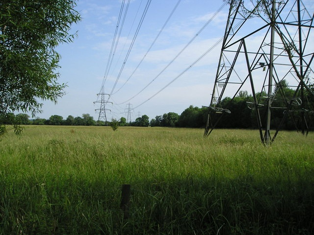 National Grid Power Lines by Marion Phillips