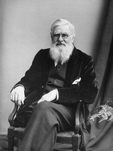 Alfred Russel Wallace (PD)