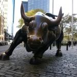 Charging Bull by Nagyszegi Istvan