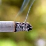 Cigarette smoke by Challiyil Eswaramangalath Vipin