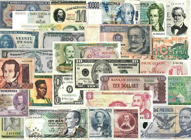 World bank Notes by Veronidae