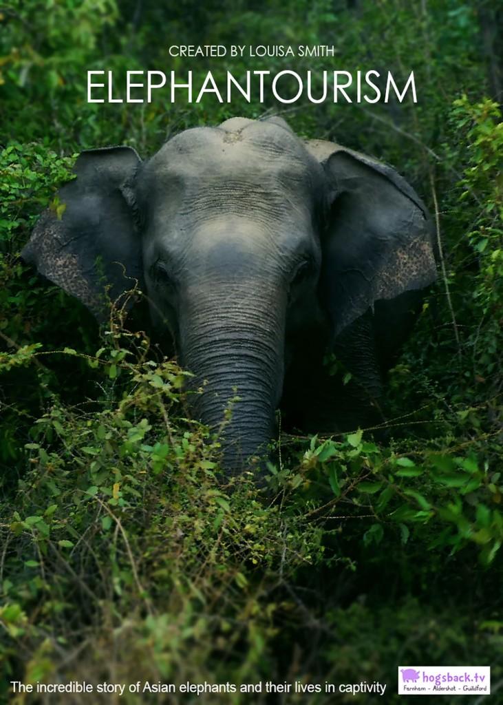 elephantourism