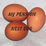 Pension Nest Egg-2