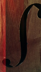 Double bass (c) Richard Henley Davis