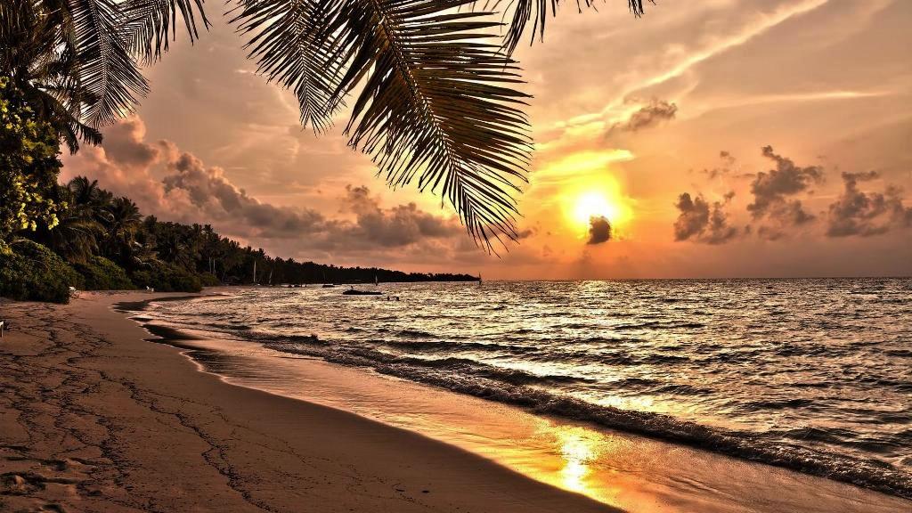Maldives island on market 2