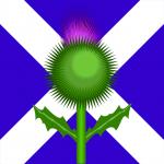 Scotland Flag Thistle (PD)