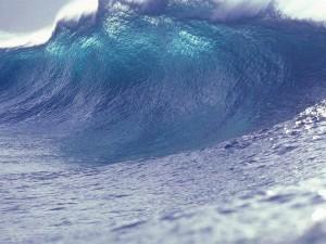 Wave (PD)