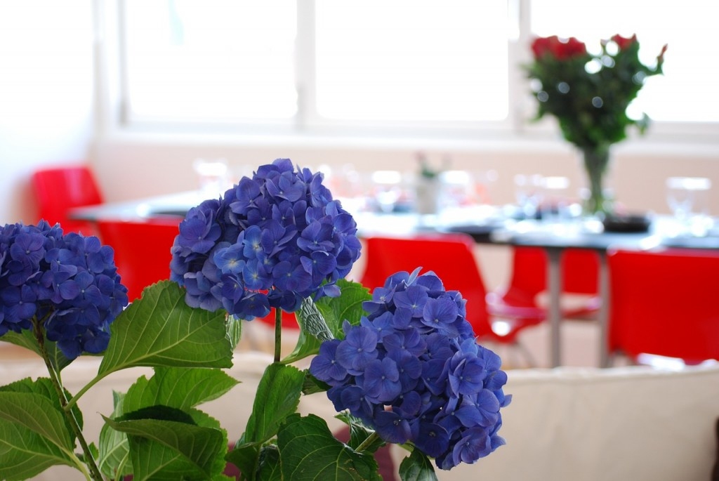 Table Setting (PD)