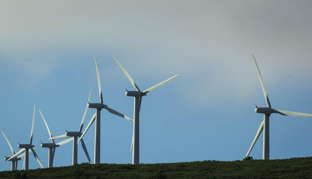 Windfarm 1 (PD)