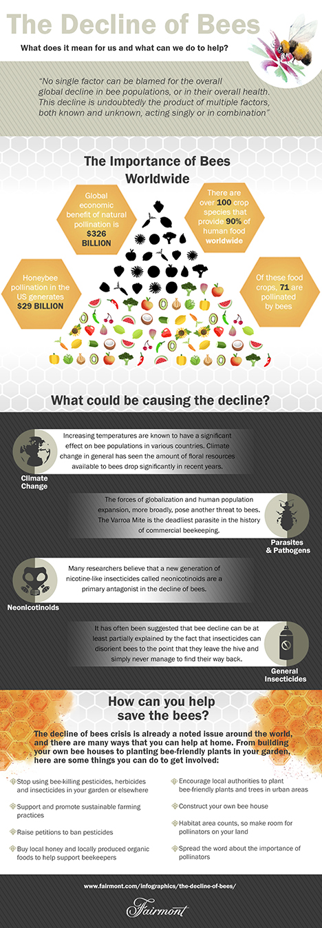 Decline of Bees Infographic_468px