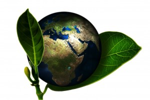 Eco-Earth (PD)
