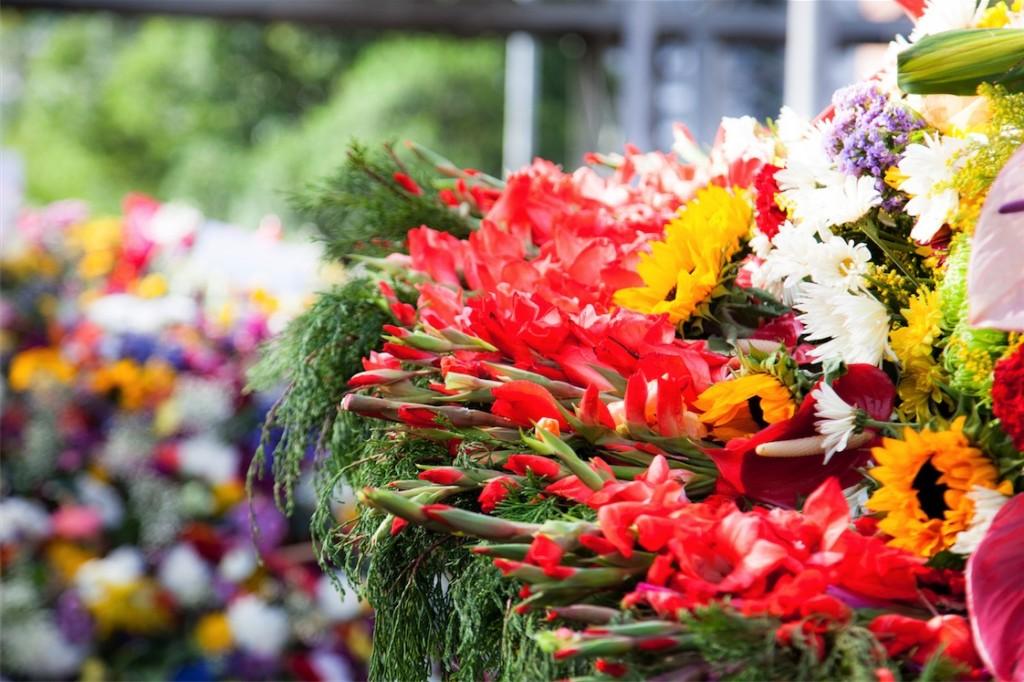 Medellin Flower festival 1