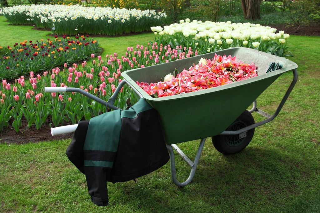 Flower garden (PD)
