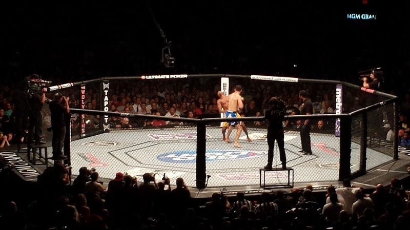 Cage Fighting (PD)