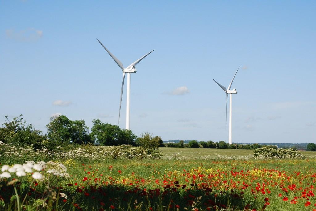 Wind Turbine (PD)
