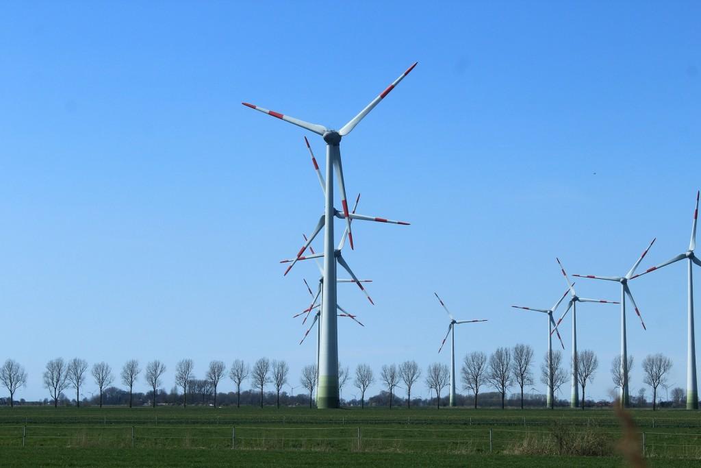 Wind Turbine 2 (PD)