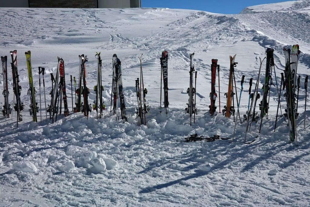 Ski Poles (PD)