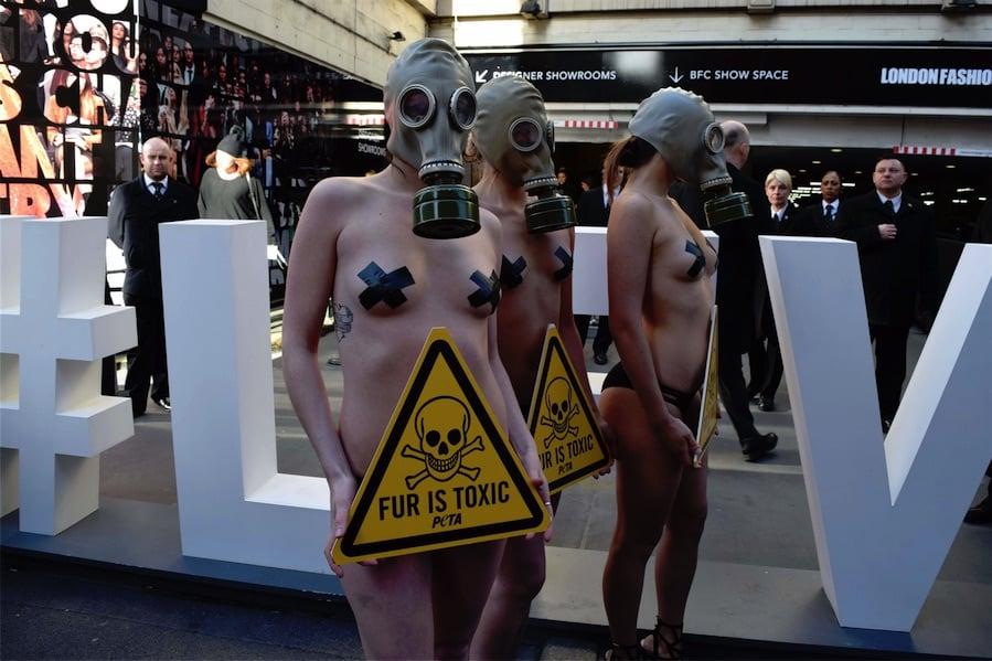 Fur is Toxic