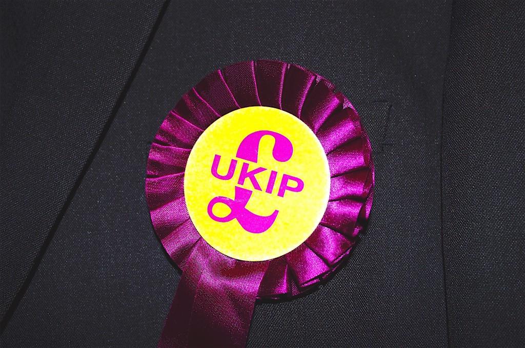 UKIP Rosette (LGT)