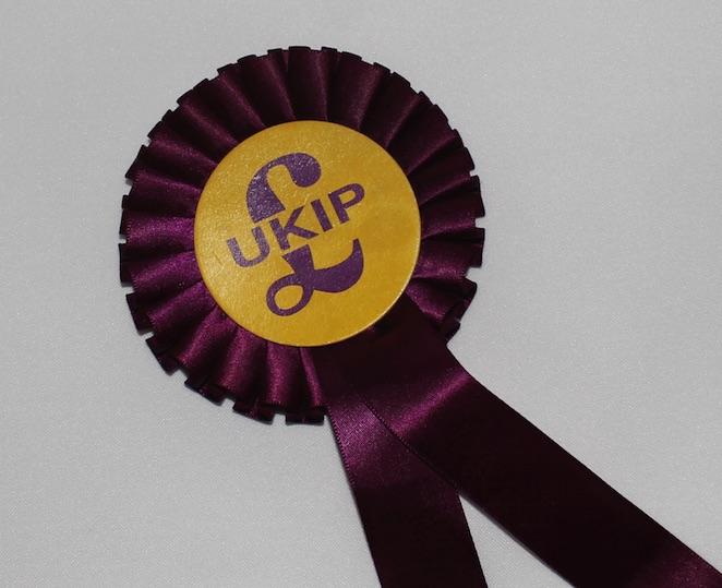 UKIP Rosette 2