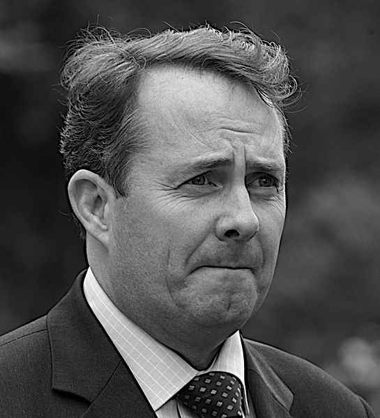 Liam Fox (CC-BY-2.0)