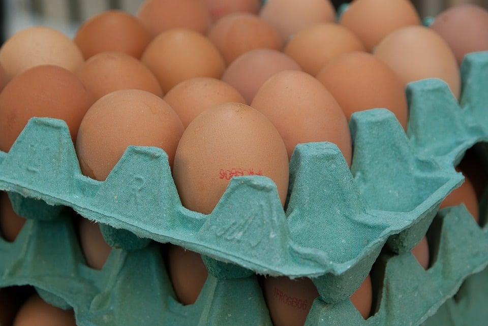 Eggs (PD)