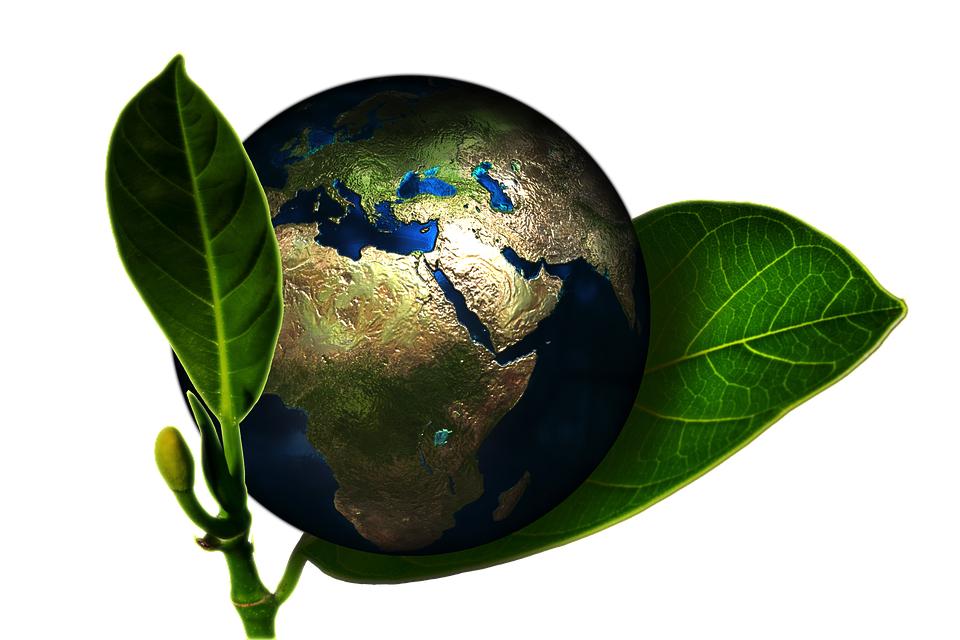Earth Environment (PD)