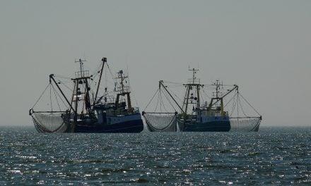 UK Fishing Industry Still Under Threat Despite Brexit!