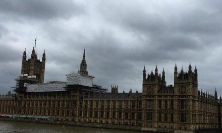 Leavers to Target pro-EU Tory MPs!