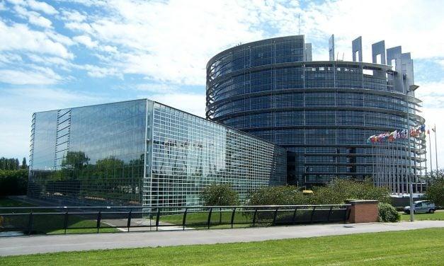 The EU is too white say MEPs