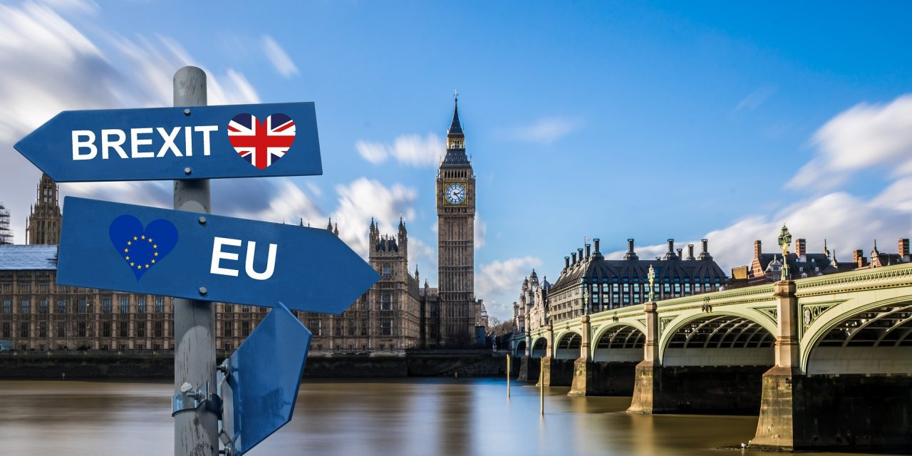 People oppose anti-Brexit Government of National Unity!